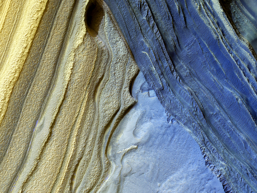 The Polar Ice Caps and Climate of Mars